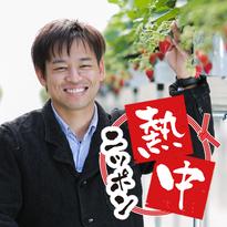 日本のイチゴは負けている?年間1万人が訪れるITイチゴ農園の挑戦