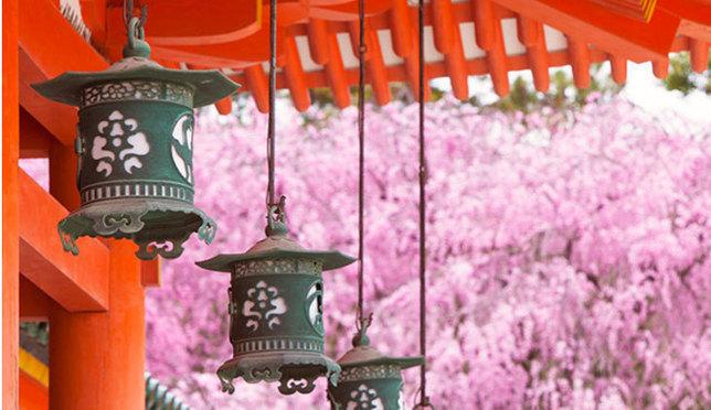 收藏!京都10大必去赏樱景点