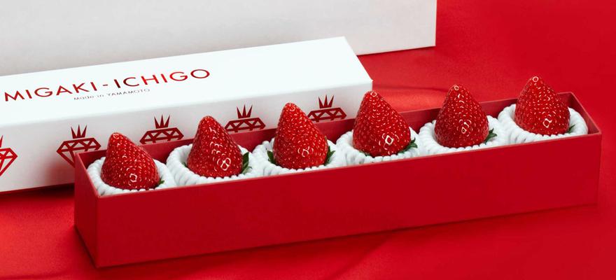 MIGAKI-ICHIGO: Japan's Tech-Savvy Strawberry