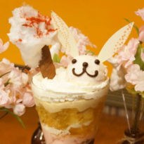 เมนูเฉพาะช่วงเทศกาลซากุระเท่านั้น! ร้านอาหารธีมกระต่ายสุดมุ้งมิ้ง