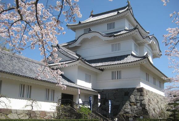 大多喜城と桜