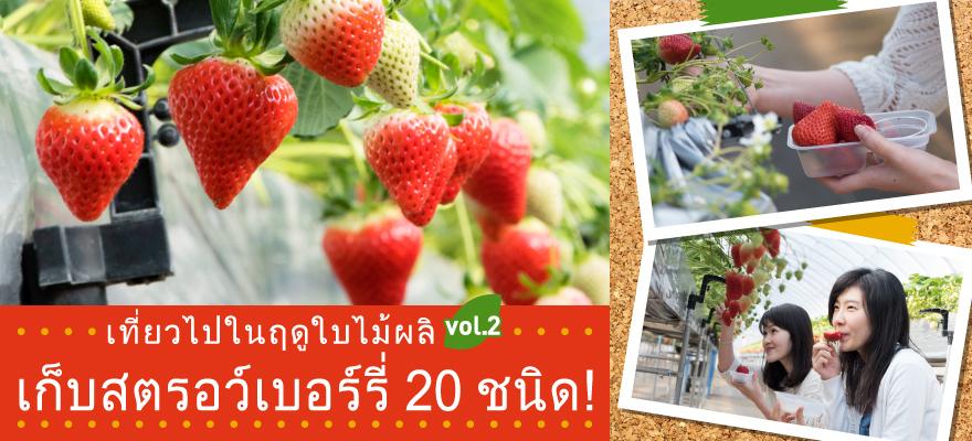 เที่ยวไปในฤดูใบไม้ผลิ vol.2 เก็บสตรอว์เบอร์รี่ 20 ชนิด!