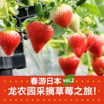 春游日本vol.2 龙农园采摘草莓之旅!