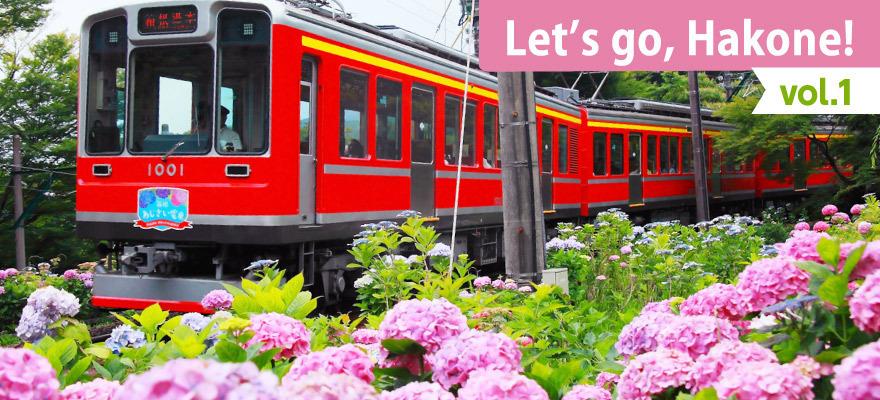 Let's go, Hakone! vol.1 Hydrangea, Trains, and Onsen