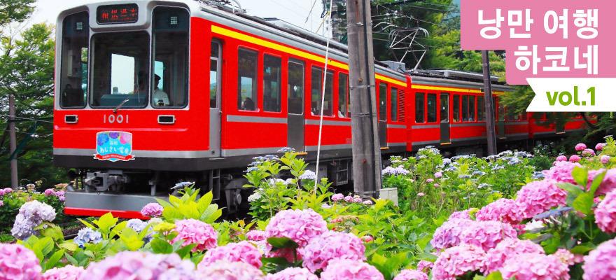 낭만 하코네 여행vol. 1수국, 열차, 온천을 즐기는 플랜