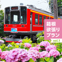 箱根欲張りプラン vol.1 あじさい、列車、温泉を楽しむ