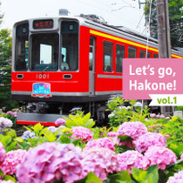 Let's go, Hakone! vol.1 Hydrangea, Trains, and Onsen
