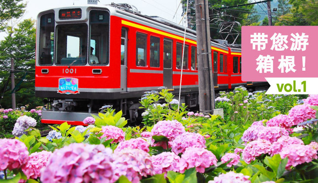 带您游箱根 vol.1 登山列车、温泉还有漂亮的紫阳花