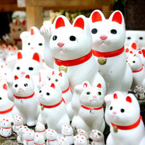 Gotoku-ji: the Maneki Neko Temple