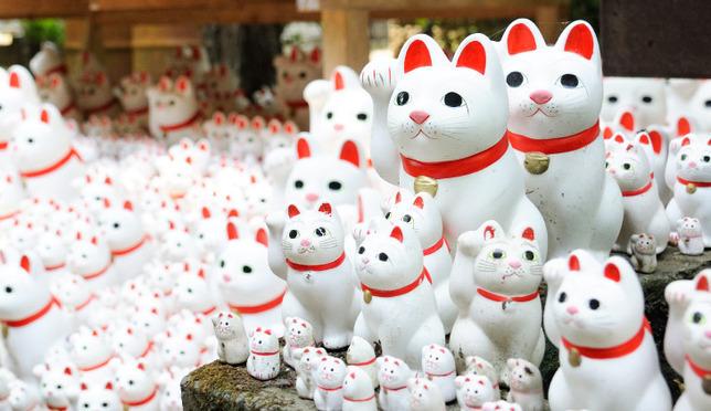 招き猫がいっぱい!「豪徳寺」で開運招福を祈願
