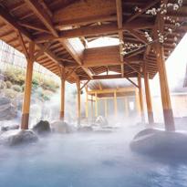 เรียวกังในฮาโกเน่ยูโมโตะออนเซ็น - โรงแรมโอกาดะ
