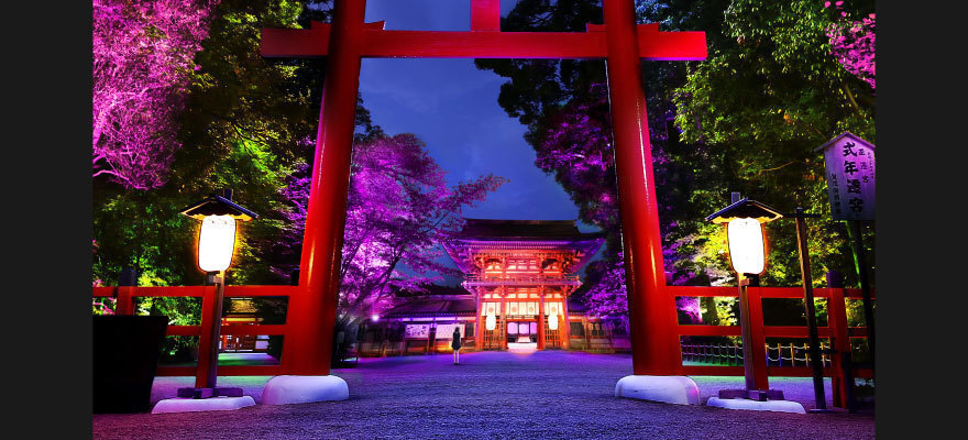 teamLab Light Festival in Tadasu no Mori at Shimogamo Shrine