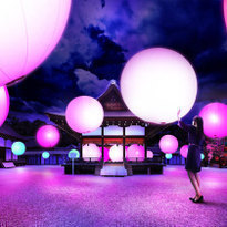 teamLab exhibtion at Shimogamo Shrine, Kyoto