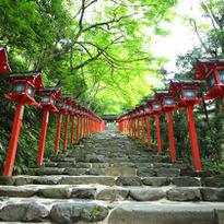 เที่ยวชมความงามของศาลเจ้าแห่งสายน้ำ Kifune Jinja ในเกียวโต