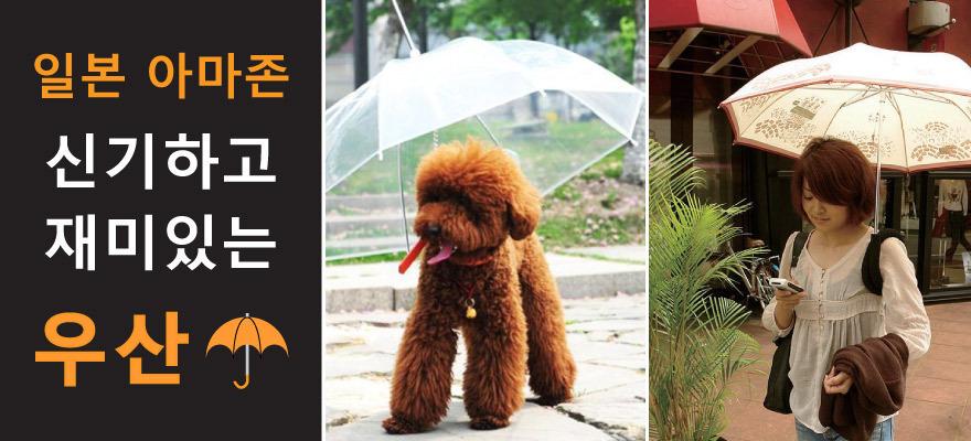 일본 아마존의 특이한 우산 메인