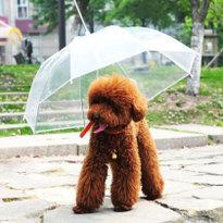 비오는 날 추천!  일본 아마존에서 판매 중인 특이한 우산