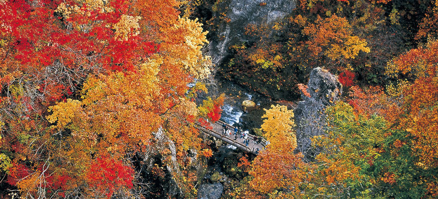 日本东北五大不可错过的红叶观赏地