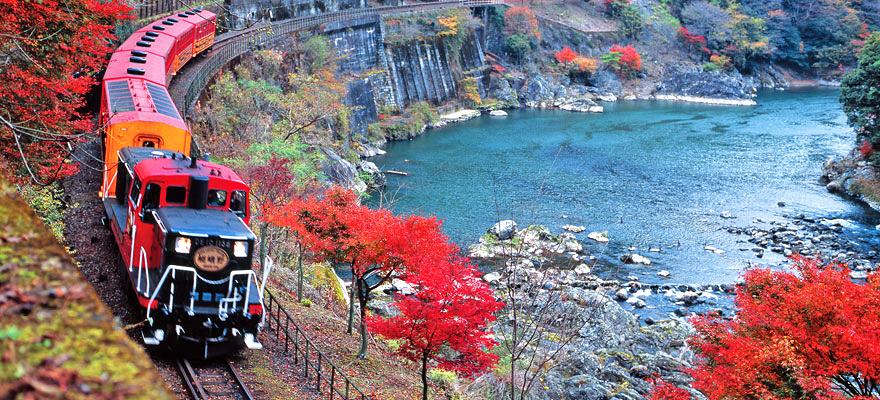 ชมวิวใบไม้แดงในเกียวโต ด้วยรถไฟสายโรแมนติก Sagano Romantic Train!
