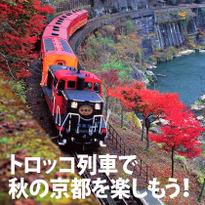 車窓から眺める京都の秋! 嵯峨野トロッコ列車でひと味違った紅葉を楽しむ