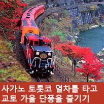 가을 교토 여행 추천 사가노 토롯코 열차 타고 단풍 즐기기