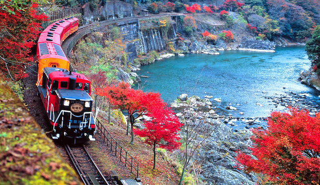 京都 嵯峨野トロッコ列車でひと味違った紅葉を楽しむ