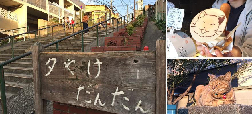 タイ人と行く猫の街!谷中で人気のおすすめ8選