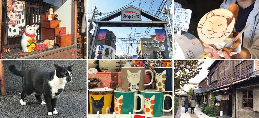 도쿄 고양이 마을 느긋하게 즐기는 야나카 산책