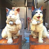 """""""ยานากะ"""" ย่านแมวเหมียวสุดชิคของโตเกียว! เดินเพลินๆ ใกล้อุเอโนะ"""