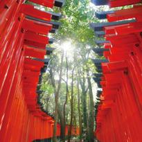 初詣で訪れたい!千本鳥居で有名な京都の伏見稲荷大社