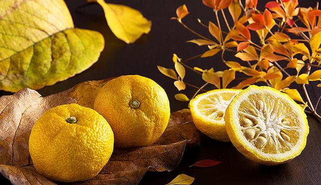 ニッポンの柚子文化はおもしろい! イタリア人ライターから見た日本人と柚子の深い関係