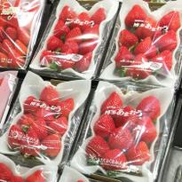 이온 몰의 슈퍼마켓에서 찾는 SNS에서 인기 폭발 상품 7선