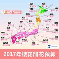 2017櫻花開花日期預測!日本最佳賞櫻時期、地點大公開!