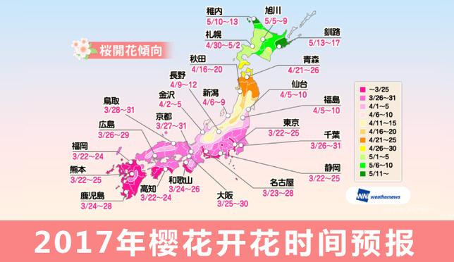 最最最新!2017年樱花开花时间预报