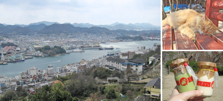 Cat lovers gather in Onomichi - searching cats