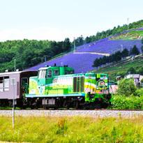 観光列車「富良野・美瑛ノロッコ号」で絶景を巡るモデルコース