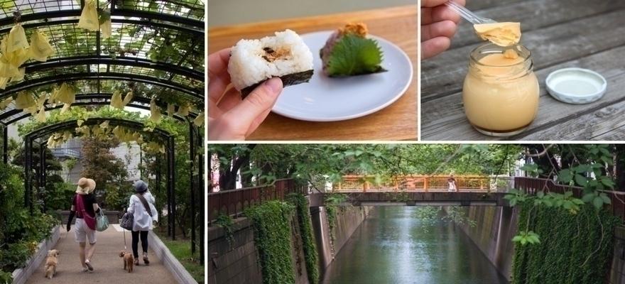中目黑13個魅力散步景點!目黑川賞櫻、美食、舊書店隱藏版景點全公開!