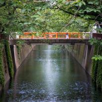 目黑川樱花之外的中目黑,13处隐藏版景点全公开!