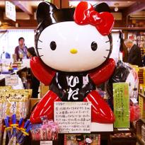 Hida Takayama Sanmachi Walk: Folk Crafts and Street Food in an Edo Period Town