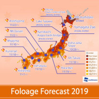 Best Times and Places to See Autumn Colors in Japan! Fall Foliage Forecast 2019