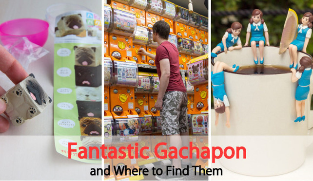Fantastic Gachapon and Where to Find Them: Discovering Japanese Capsule Toys