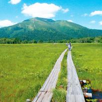 东京出发!4条路线玩遍世界遗产日光及尾濑国立公园