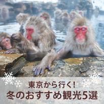 東京から行く!日本の冬に楽しめる観光スポット5選