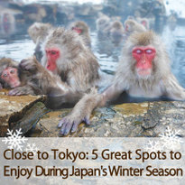 Close to Tokyo: 5 Great Spots to Enjoy During Japan's Winter Season