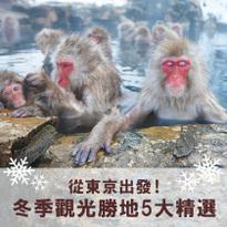 東京出發!越冷越人氣的5大冬季觀光勝地說走就走!