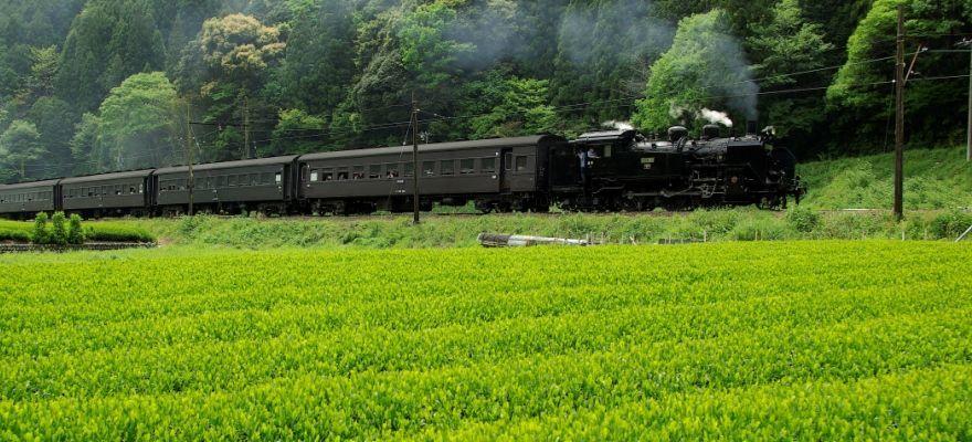 湯瑪士小火車出發!搭乘大井川鐵道SL蒸氣火車,飽覽山間無限絕景!