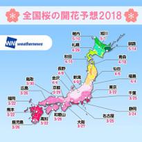 2018年 日本全国桜の開花予想!東京・京都は3月22日予定