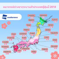 ห้ามพลาด! พยากรณ์ซากุระบาน ปี 2018 เกียวโตและโอซาก้าบานเต็มที่ประมาณ 3 เมษายนนี้