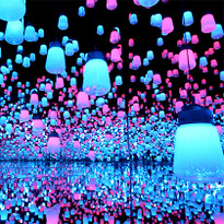 Amazing Digital Art Museum 'teamLab Borderless' Opens in Tokyo!
