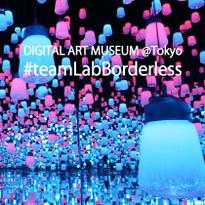 """เปิดใหม่! DIGITAL ART MUSEUM """"teamLab Borderless"""" ณ โตเกียว"""