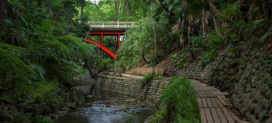 Todoroki Valley, a Secret Nature Hideout in Tokyo